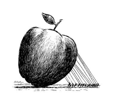 Common Core: The Root of New School Problems – Cuomo and Mulgrew: Birds of a Feather Fail Together