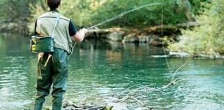 pescatore-ticino