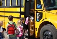 autista scuolabus