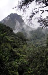 Parque National Natural Los Nevados