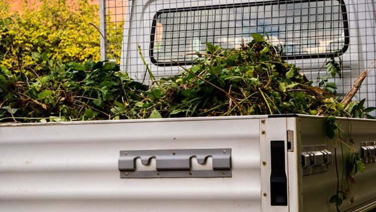 Siracusa. Atto vandalico, abbandonato carico di sfalci di potatura nello  spiazzo dell'ospedale Rizza - Libertà Sicilia