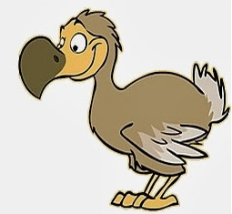 Dodo Box Image
