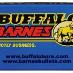 Buffalo Bore, .40 S&W, 125 Grain, TAC-XP HP, 20 Rounds