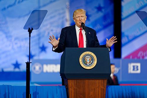 Donald J Trump photo