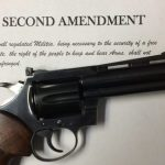 Florida case challenging open carry ban highlights 2A dilemma