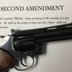Beware the Ides of March When Gun Control is the Agenda