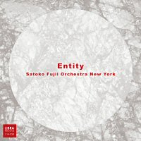 "cd jacket ""Entity"""