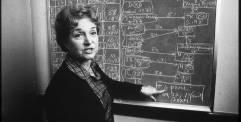Selma Dritz at chalkboard