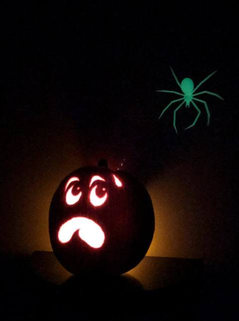 picture of pumpkin with 3D printed glow in the dark spider
