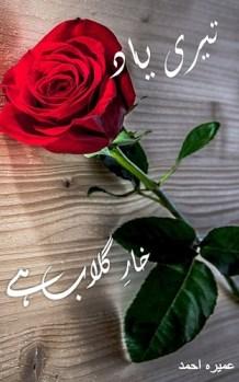 Teri Yaad Khar e Gulab Hai Novel By Umera Ahmed Pdf