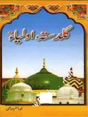 Guldasta e Aulia by Aslam Lodhi Free Pdf
