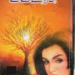 Ik Tere Aane Se Novel by Subas Gul Free Pdf