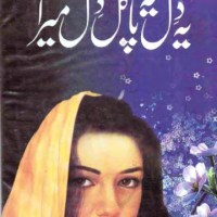 Yeh Dil Yeh Pagal Dil Mera Novel By Alia Hira Pdf