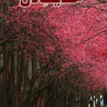 Hadees e Dil Urdu By Abu Yahya Pdf Download