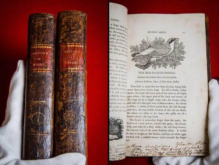 La copia de A History of British Birds (Una historia de las aves británicas) de Thomas Bewick perteneciente a la familia Brontë. Foto: Sotheby's