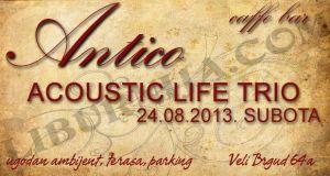 Acoustic life trio-Antico