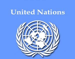 The UN Libya Experts Panel report.