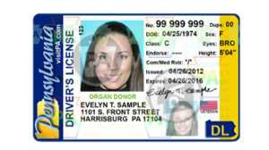 license Restoration Services