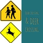 Deer and Dear crossing safety raod sign
