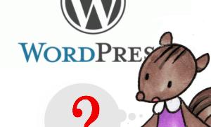 *WordPressを始めてみたものの…