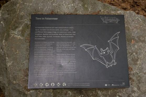 Auf den Wanderwegen gibt es viele Hinweistafeln mit Informationen zur Flora und Fauna, sowie die Entstehug des Felsenmeeres