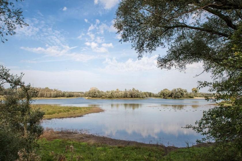 Fluss- und Auenlandschaft in der Millingerwaard