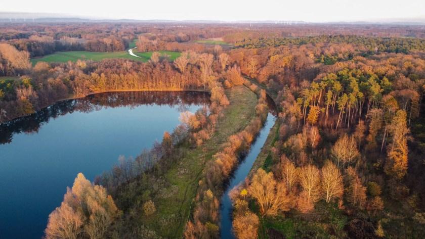 Die Bäume am Ems-Hessel-See und der Hessel leuchten gelbrot bei untergehender Sonne