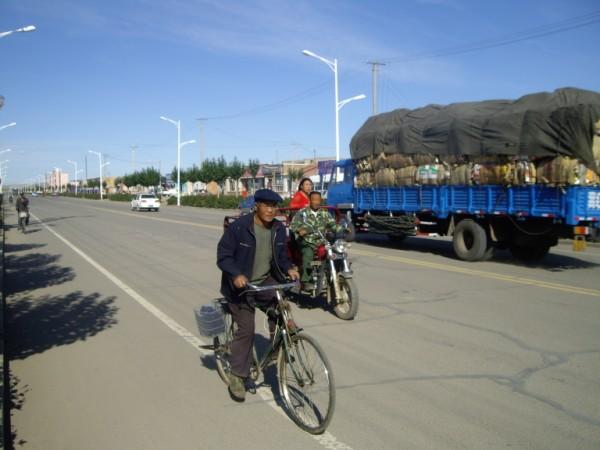 אופניים במונגוליה