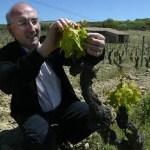 Juan Carlos López de Lacalle, propietario de Bodegas Artadi