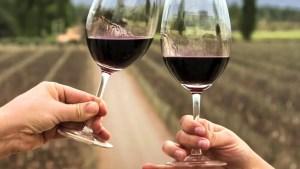 importaciones de vino