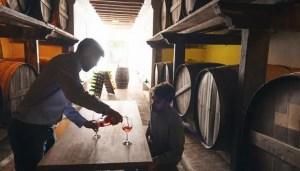 producción mundial de vino 2