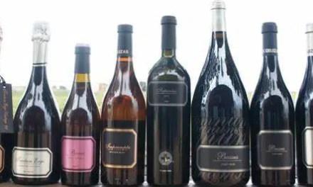 La guía Wine Up sitúa los 11 vinos de Hispano Suizas entre los 100 mejores del año en España