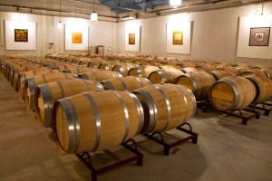 la bodega la esencia del viñedo