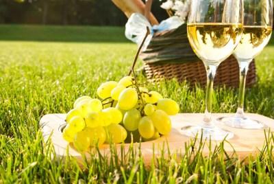 Pinot Grigio,