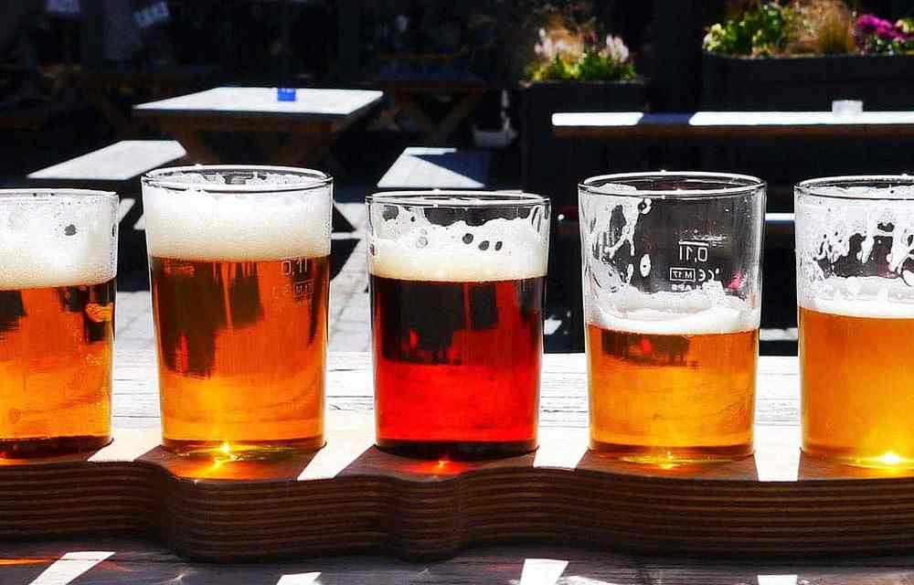 Cerveza ale vs cerveza lager: estilos, producción y perfiles de sabor