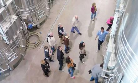 La Fermentación del vino, una práctica común desde la antigüedad