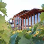 Bodegas Fos 2021: vinos que seducen irremediablemente
