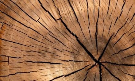 Espíritus de madera directamente de Japón