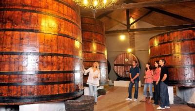 El vino aragonés