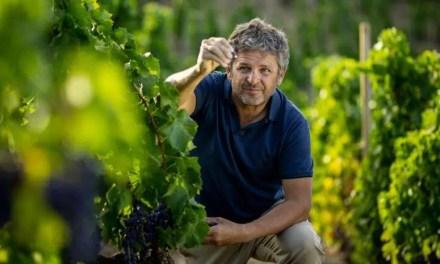 El icónico vino del Priorat L'Ermita obtiene máxima puntuación en The Wine Advocate