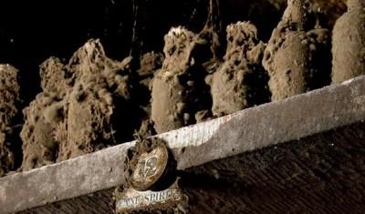 La colección de ron Harewood