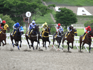 Equestrian Tips | Why do horses fail in the race?