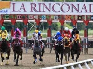 Of pedigree | Equestrian Gala Week