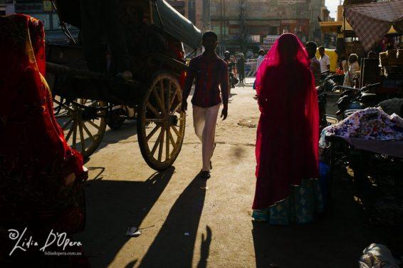 Jodhpur-M91020729