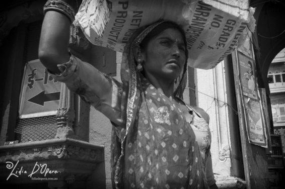 Jodhpur-MM1011124-Edit