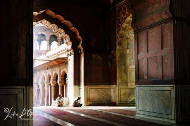 New Delhi-M91019841