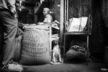 New Delhi-MM1011960-Edit