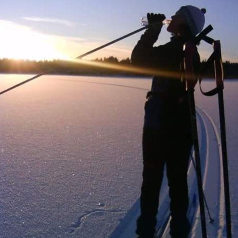 Lissel-skidor