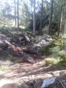 Flimser Bergsturz