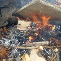 die sterne werden verbrannt
